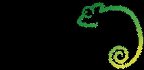 Chameleon Brick Tinting Services Logo